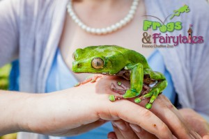Frogs and Fairytales 0049 logo