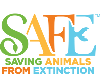 Saving Animals From Extinction