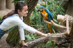 Zoo Camp 0022